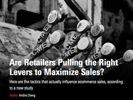Are Retailers Pulling the Right Levers to Maximize Sales?