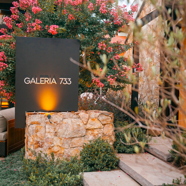 GALERIA 733