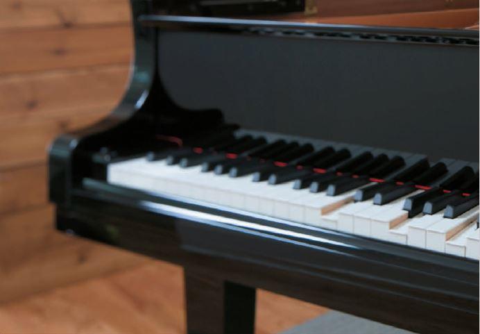 klavierbetriebjelemenskyhotel3.JPG