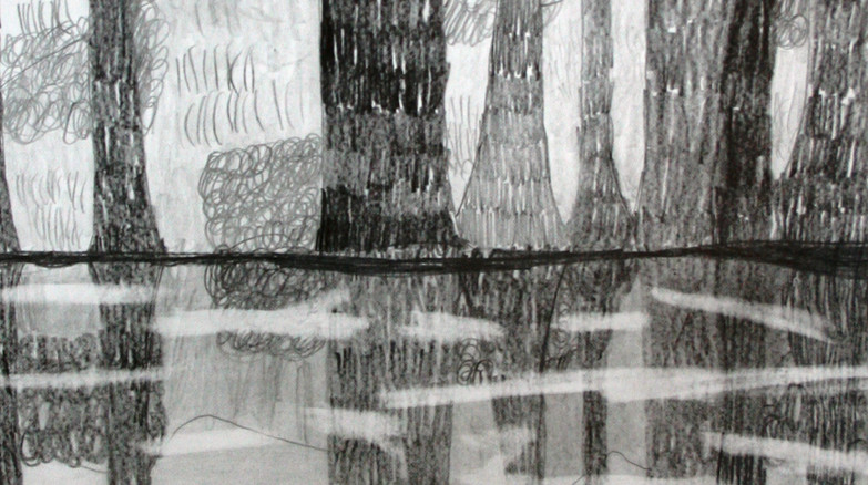"""Reflection Landscape"""