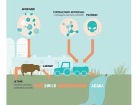 """Farmaci e Pesticidi nei nostri fiumi... e quelli """"padani"""" sono i più mal messi."""