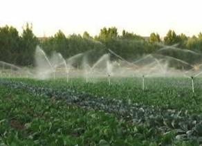 In Polesine è vietato irrigare con acqua dell'Adige