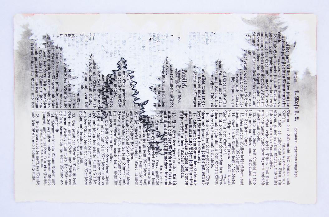 Untitled 24 (Genesis 1:27-2:25)