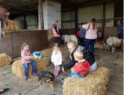 playgroup barn