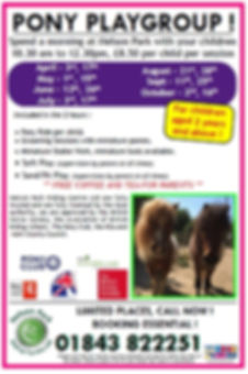 Pony Play 2020 FB Advert.jpg