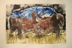 Spirits Within The buffalo