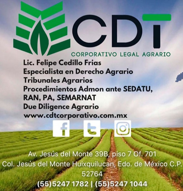 corporativo-CDT_edited_edited.jpg