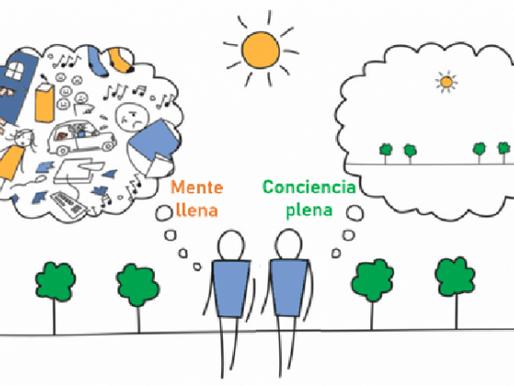 ¿Cómo aprovechar el potencial de nuestra mente? Mindfulness