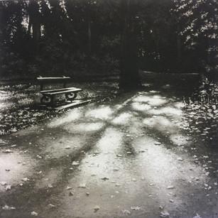 Park Light III