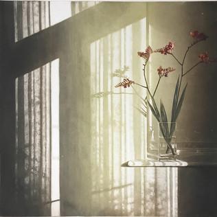 Window Light XXII