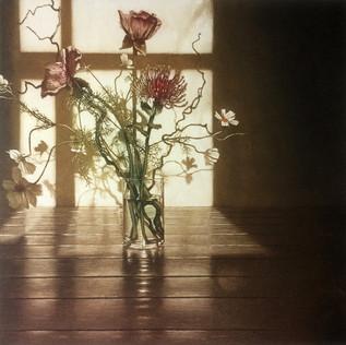 Window Light XV