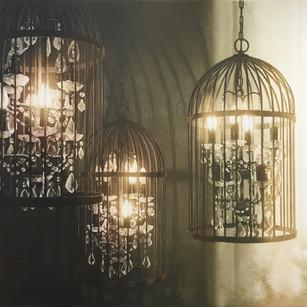 Captured Light