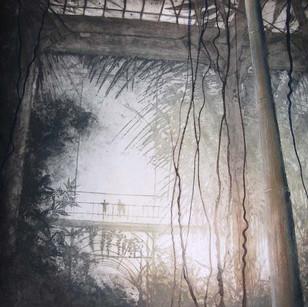 Palm House V