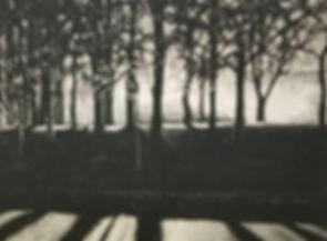 smallb&w trees plate.jpg