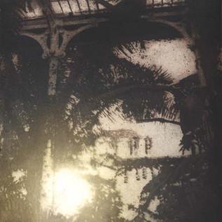 Palm House VII