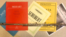 Goodman Flute Studios Summer Studio Classes