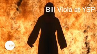 Bill Viola at Yorkshire Sculpture Park