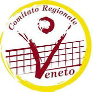 Fipav Veneto logo