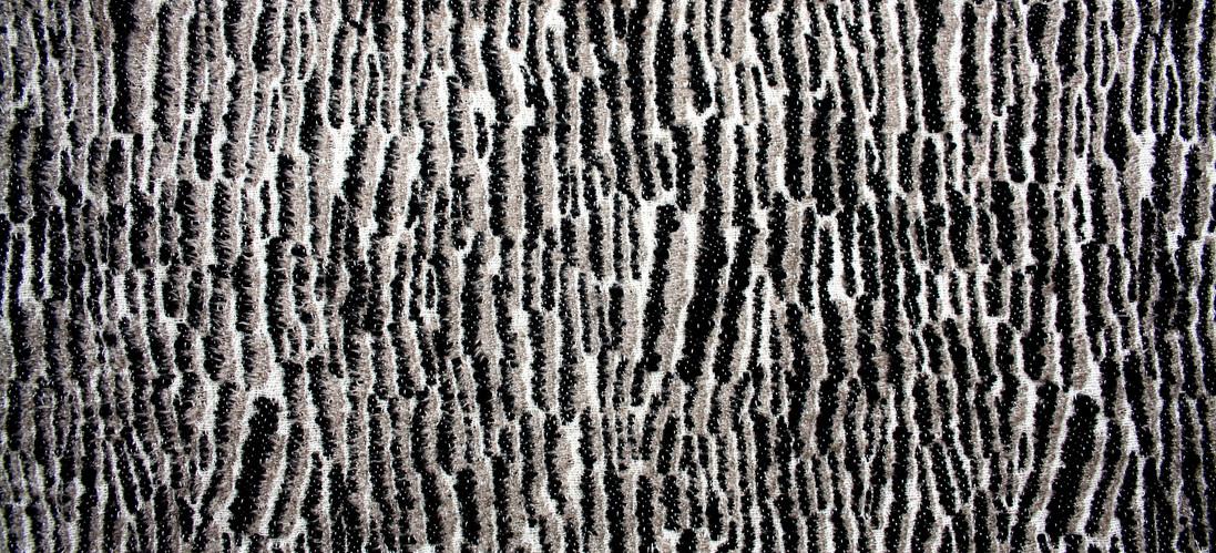 Osprey (detail)