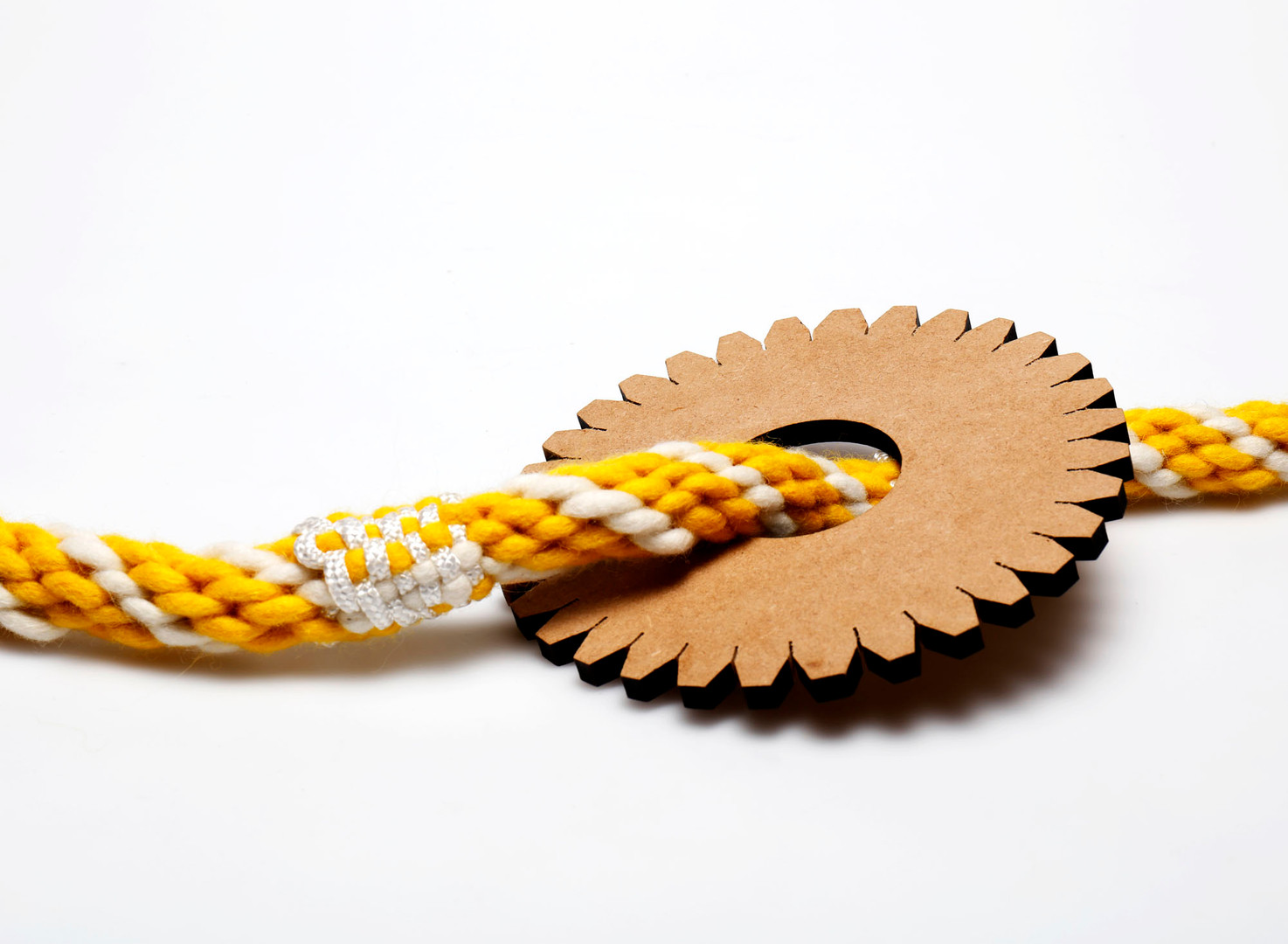 Checker Rope with Disk