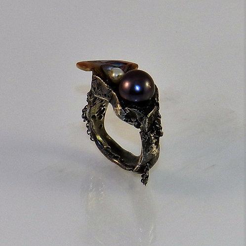 Oxidised Ring