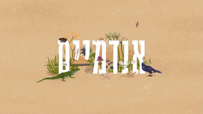 Endemic of Israel Cathy Kuks.jpg
