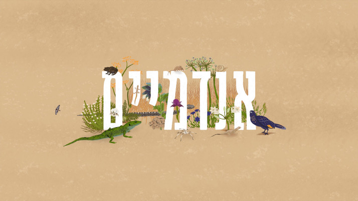 Endemics of Israel