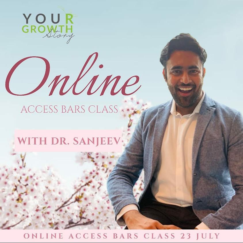 Online Access Bars®
