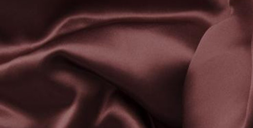 Ox-Blood 100% Silk Satin Slip
