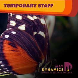 Facebook Service - Temporary Staffing 60