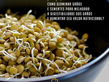 Como germinar grãos e sementes para melhorar a digestibilidade dos grãos e aumentar seu valor nutric