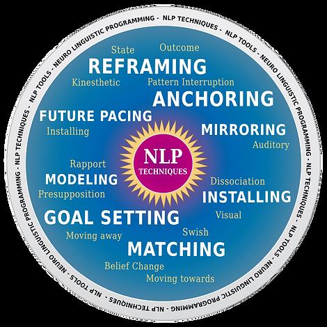 NLP%20wheel_edited.png