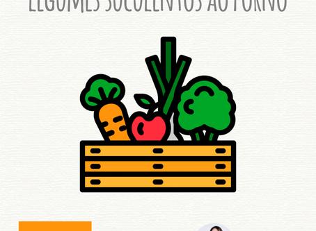 Legumes Suculentos ao Forno
