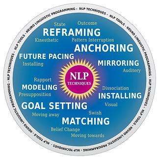 NLP wheel.jpg