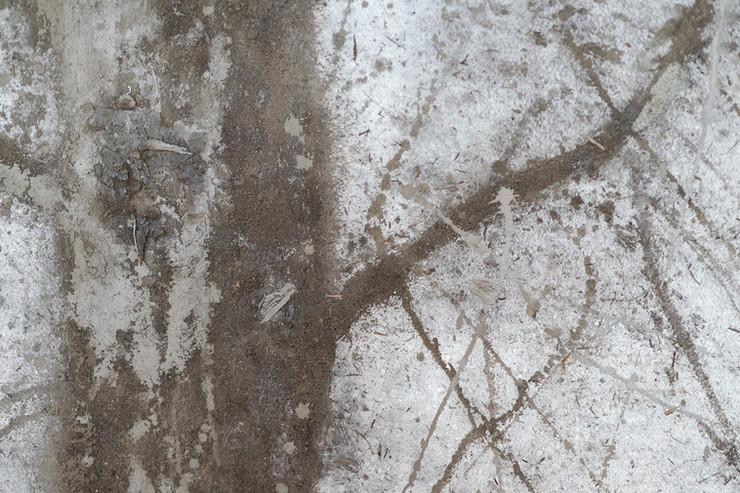 Jacopo Naccarato, Ritratto di un albero, 2019, terra, argilla, dimensioni ambientali, courtesy l'artista, credit Federico Rinaldi