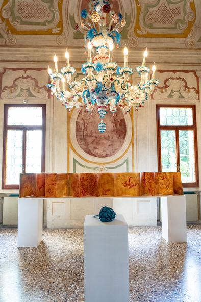 Installation view, credit Riccardo Ciriello