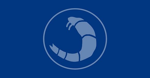 shrimper 3.png