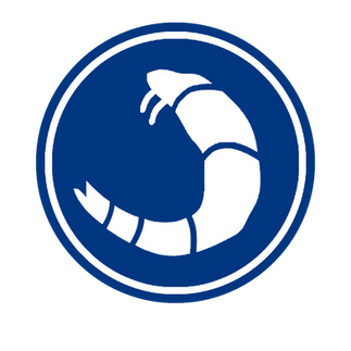 Logo design which features the clubs colours and a shrimp. The club are famously known as 'the Shrimpers'