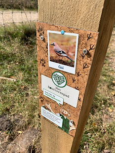 Peerdrops heeft een bosdierenpad gerealiseerd voor Staatsbosbeheer. Ga op pad doe de opdrachten en leer van alles over de dieren die in het gebied leven.
