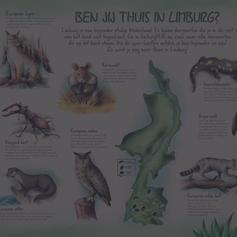 • LIMBURGHUIS •