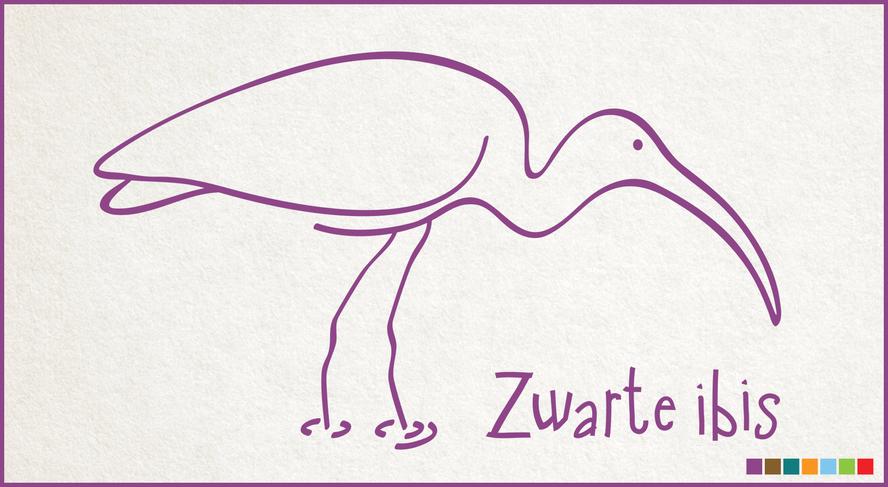 DPA_ZwarteIbis.png