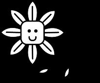 zonnebloem-06.png