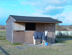 WIltshire stable