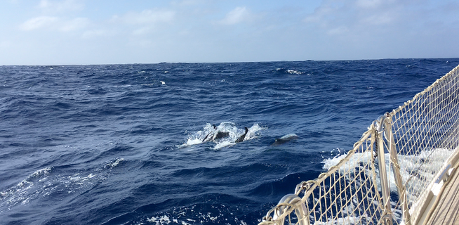 Ourfirst real offshore passage