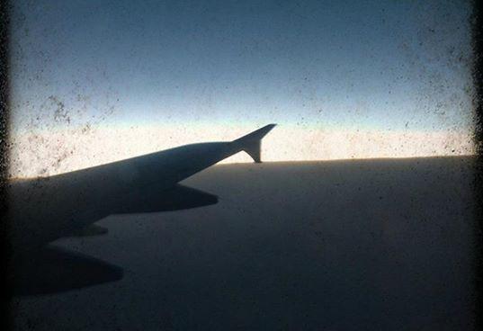 Ella goes on a plane ride