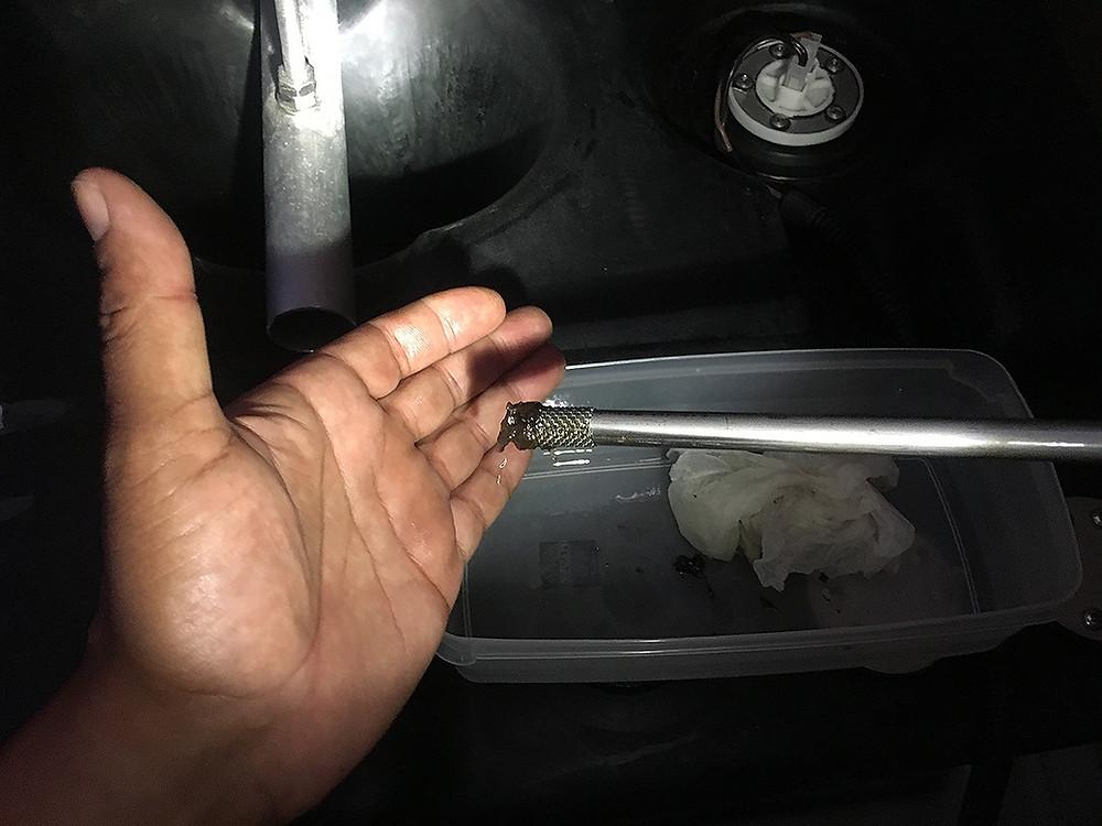Diesel Bug clogging fuel intake
