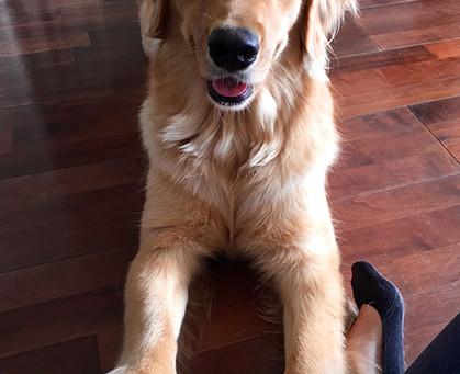 Hello! My name is Ella