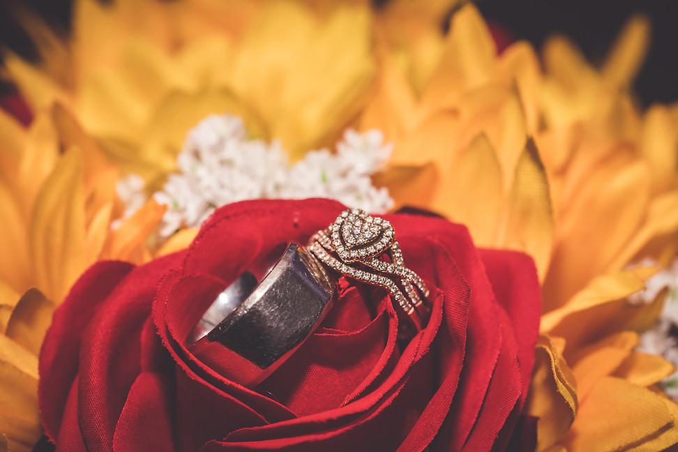 The Wedding of Chelsie & David -San Antonio, Tx.