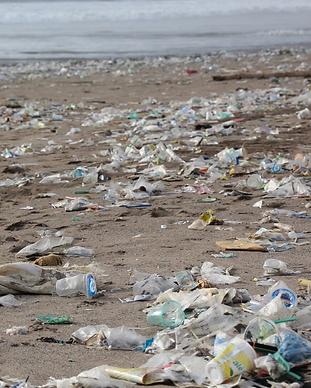 Plasticwaste.png