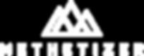Methetizer-Logo-B Angepassst.png